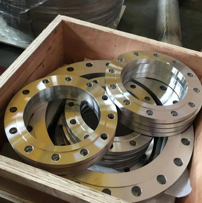 Oem Custom Cast Stainless Steel Investment Casting/Forged Slip-On Flange